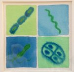 Some of my favourite bacteria (by artologica)
