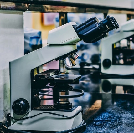 Microscopes on a lab bench.